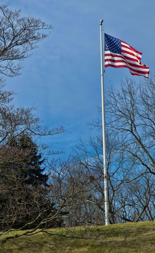 Flag_Brandywine