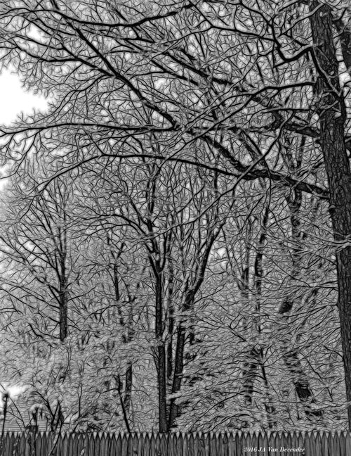 Black&White_P3040034