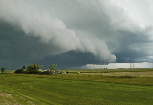Storm-2_8129605