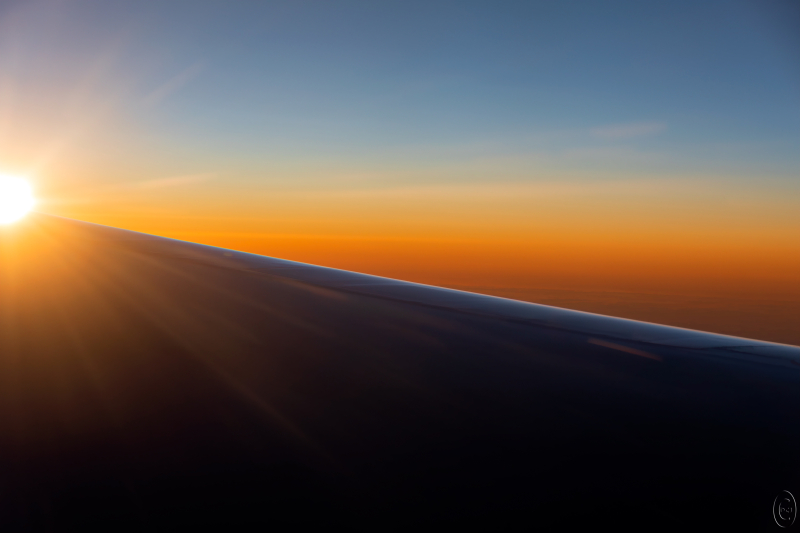 Out_the_window_25262_wing_light