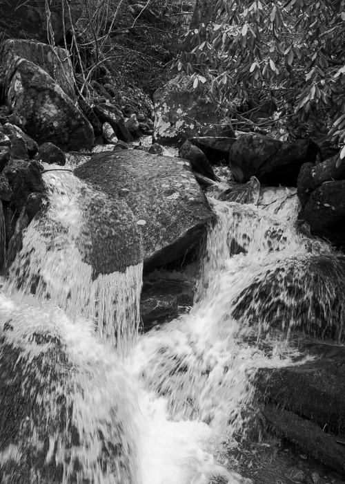 Living Water B&W_AV010025