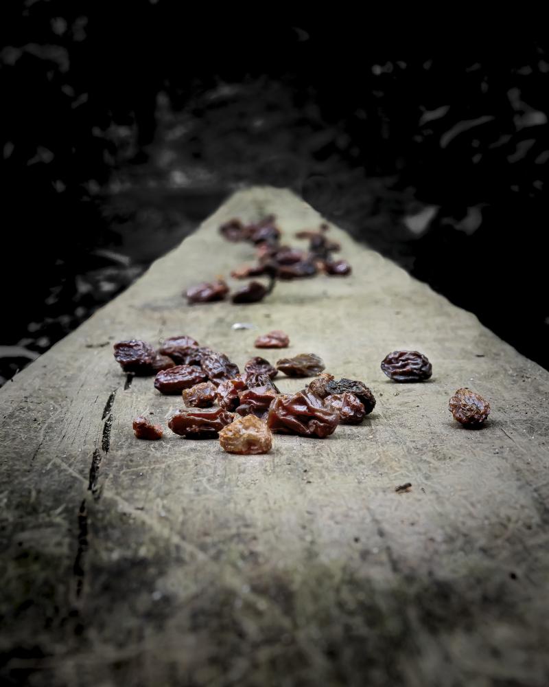 Raisins On The Wall_0P030011