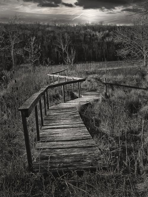 The Path Ahead_P1072522