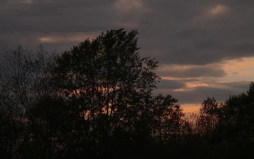 Sunset01-0P080182