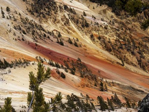 Colors_Grand Canyon Yellowstone_P4280139